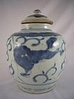 Ming Dynasty Blue and White Porcelain Jar