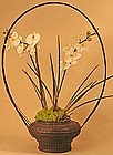 Very Fine, Monumental Edo Period Ikebana Basket