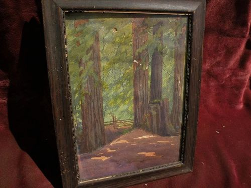 California redwoods watercolor painting possibly by LORENZO PALMER LATIMER (1857-1941)