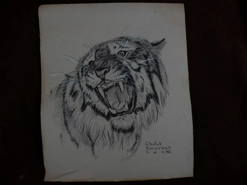 GLADYS EMERSON COOK (1899-1976) charcoal drawing of tiger by noted American artist specializing in animals