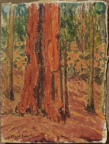 Vintage watercolor painting forest tree signed Mary Inez Tidwell