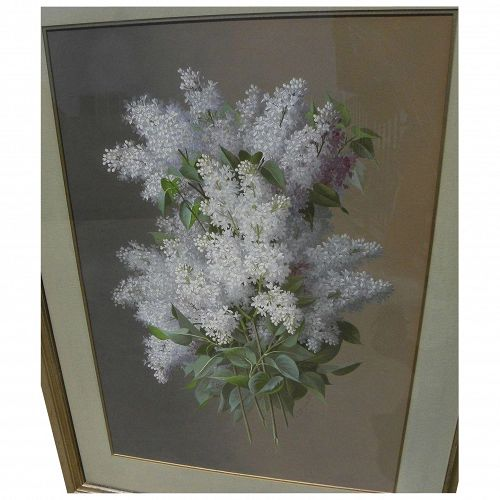 RAOUL M. DE LONGPRE (1843-1911) fine gouache painting of lilacs by noted artist