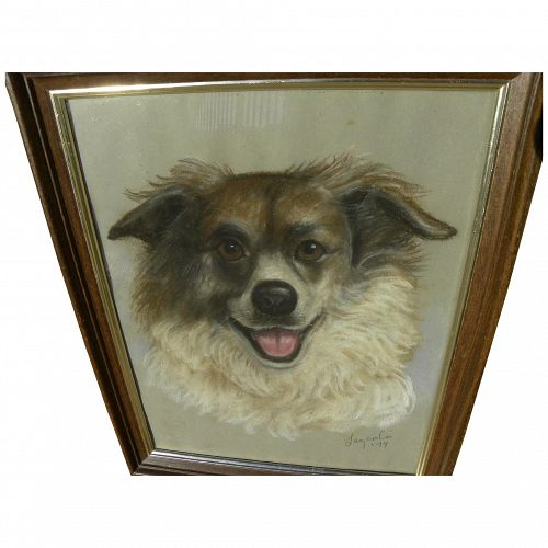 Dog art pastel signed portrait drawing of border collie or Australian Sheepdog dated 1979