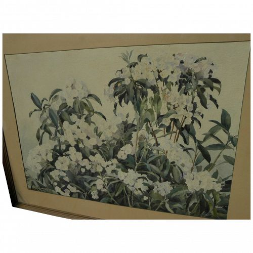 RICHARD ANDREW (1869-1956) large watercolor painting of mountain laurel and blossoms