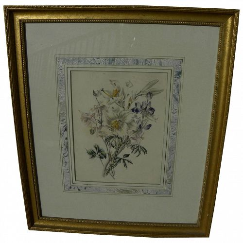 Antique botanical print nicely framed with French panel mat