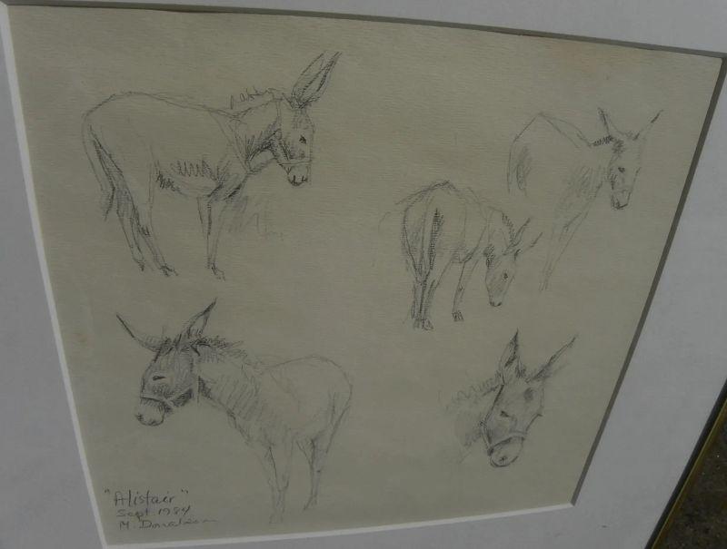 "MARYSIA DONALDSON (-2018) beautiful study drawings of donkey ""Alistair"" by noted Scottish artist"