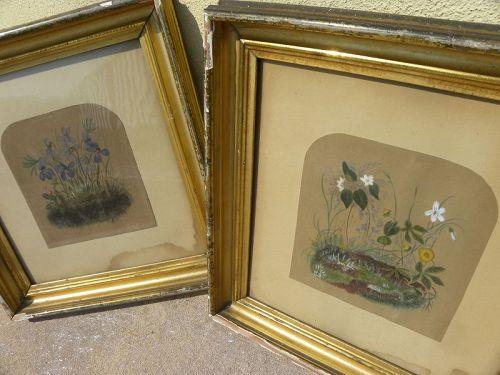 PAIR American antique folk art floral watercolor paintings