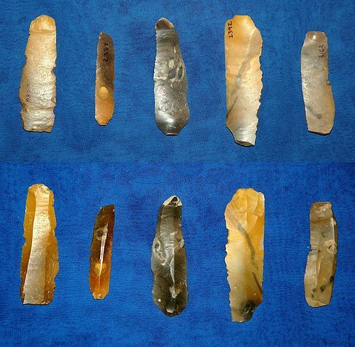5 Danish Mesolithic blades