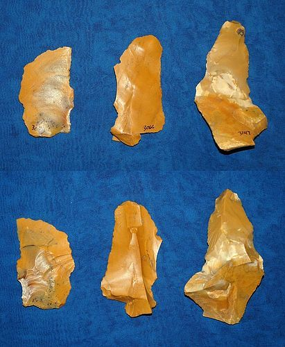 3 Neanderthal multi-tools on Irregular Levallois flakes