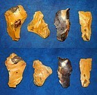 4 Neanderthal multi-tools on Levallois flakes