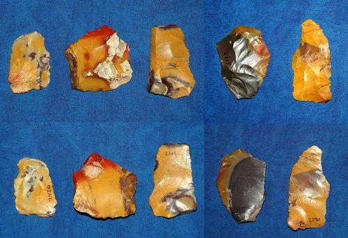 5 Neanderthal scrapers