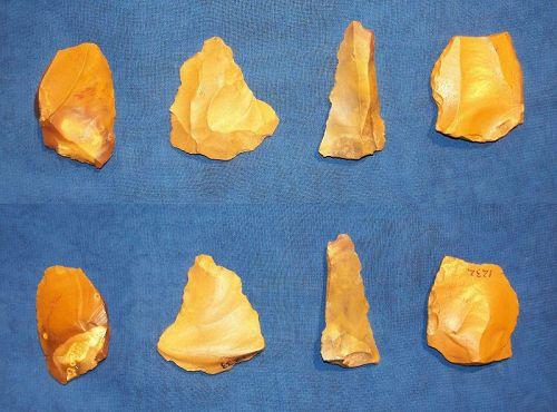 4 Various Neanderthal tools