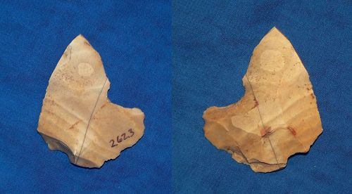 Neanderthal notched Burin