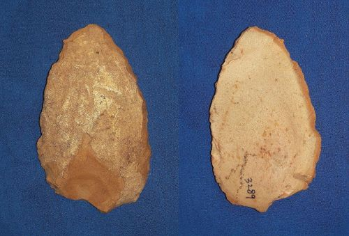 Larger Neanderthal Convergent Scraper