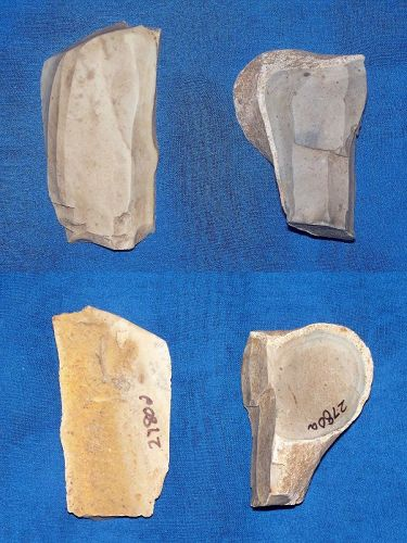 Two Neolithic Linear Pottery Culture Cores