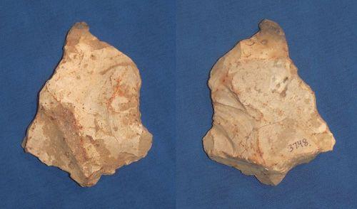 Neanderthal Proto Axe