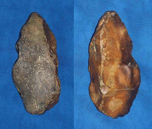 Neanderthal Pic