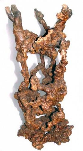 Chinese Sculptured Root Stand - Qing Early 19th Century