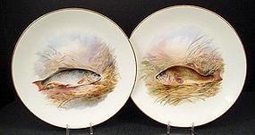 6 Antique Bodley Fish Plates, Artist Signed, J. Birbeck