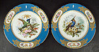 Magnificent Antique Paris Porcelain Cabinet Plates