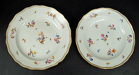 11 Lovely Antique Meissen Dinner Plates
