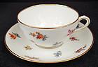 Lovely Antique Lamm Dresden Tea Cup & Saucer