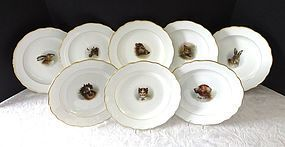 8 Antique Meissen Plates with Animal Portraits