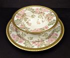 10 Art Nouveau Pouyat Limoges Dessert Bowls & Plates