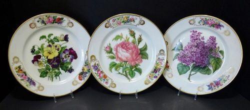 3 Antique Paris Porcelain Botanical Plates