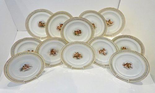 12 Antique Meissen Cabinet Plates, Cherubs