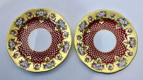 G985  Pair Cauldon Cabinet Plates, Brilliant Colors