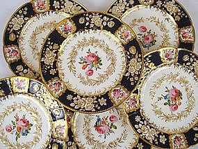 6 Antique Coalport Cabinet Plates