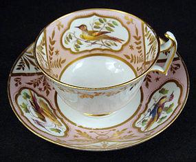 Antique Spode Ornithological Tea Cup & Saucer