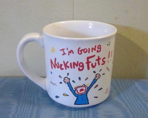 Nucking Futs Mug