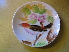 Hand Painted Bird Plate