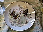 Porcelain Butterfly Plate