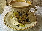 Mikasa Sunny Side Cup and Saucer