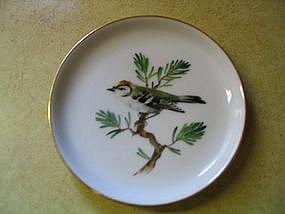 Rosenthal Bird Plate