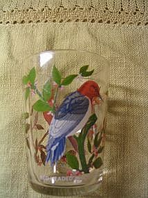 Arcoroc Bird Glass
