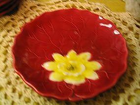 Zell Plate