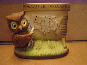 Weather Forecast Owl