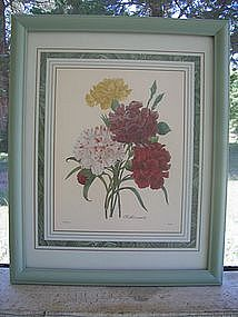 Redoute Carnation Print