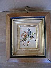 Rudolf Freund Print