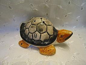 Turtle Shaker