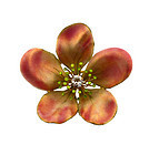 Art Nouveau 18K Gold, Enamel & Diamond Apple Blossom Pin/Pendant