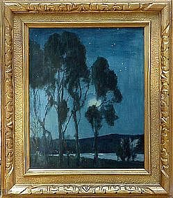 Eucalyptus at Night : De Witt Parshall