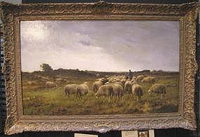 Flock of Sheep: Cornelius Westerbeek