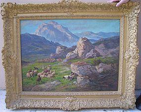 Shepherd with Flock in California: John Califano