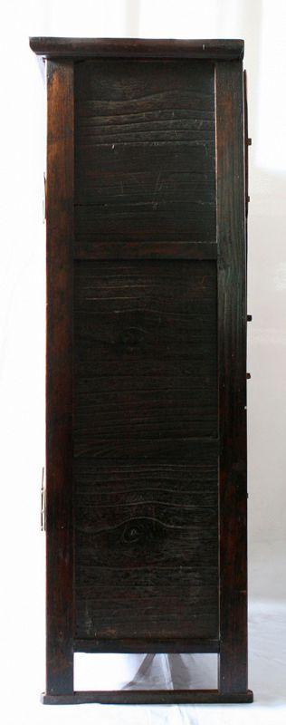 Rare, Museum Quality 19th Century Medicine Chest with Paulownia Doors