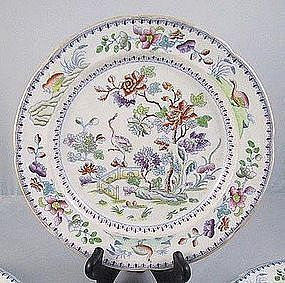 Set Of 4 Davenport Stone China Bird Plates Ca. 1830